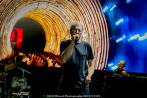 2018, Sep 21-Deep Purple-Stir Cove-Winsel Photography-4803