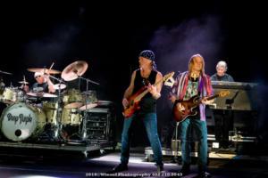 2018, Sep 21-Deep Purple-Stir Cove-Winsel Photography-4970
